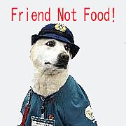 国内の犬肉禁止 そして世界へ