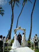 南の島に嫁に行こう〜幸せ結婚〜