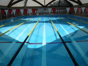 カリタス水泳部