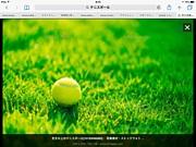 平日テニス、海老名、厚木