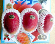 宮崎産完熟マンゴー太陽のタマゴ
