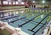 文教大学付属水泳部