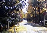 京大S6☆2007入学