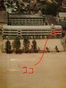 2003年卒 八鹿高校 7H