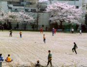 神奈川県立新城高校サッカー部