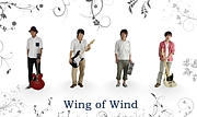 Wing of Wind