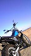 バイクにまたがり風になろう会