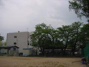 新潟県立高田高校 テニス部