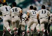 軟式野球・東京メトロポリタンズ