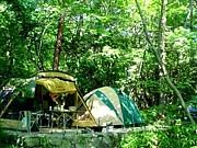 2009☆キャンプ