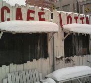 CAFE DE LOTTA