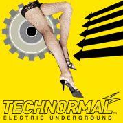 TECHNORMAL/�ƥ��˥��顼