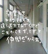 卒業〜社会人