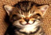 あなたの笑顔が好きです♪