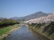 京都de着物。
