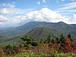 浦和南山の会