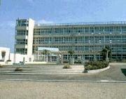 横浜市立十日市場小学校