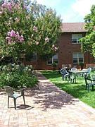 2007年シドニー大学短期留学