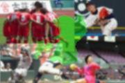 熊本のスポーツを応援しよう!