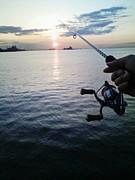 川崎海釣り教室