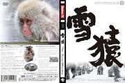 二松大スノーボードサークル山猿