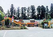 野ばら幼稚園(下野市)