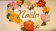 ‡‡ Noela ‡‡