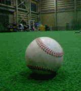新潟の高校野球