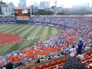 元・横浜シミズ(野球登録)