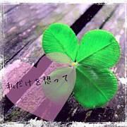 本気で恋したいin北海道