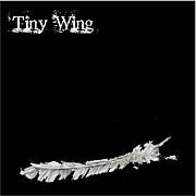 Tiny Wing