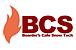 BCS@アルペン