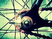 M*S 自転車部