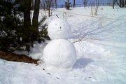 冬も夏もスノーボード