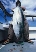 ニュージーランドで釣り釣り