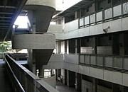東京学芸大学 2008年度新入生