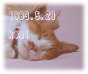 1983.5.29 生まれ