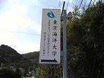 東京水産大学坂田実験実習場