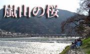京都いっぱい