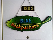 The Bluebackpackers プサン