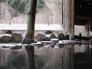 Nihon温泉クラブ