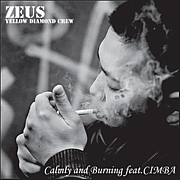 ZEUS(YELLOW DIAMONDCREW)