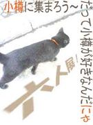 六々美会 in 小樽