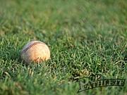 Million sun's 野球部