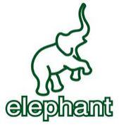 elephant 大宮