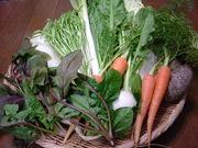 はざま農園の美味しい野菜