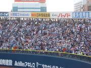 関東3球場が好きな中日ファン