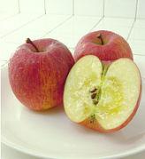 林檎をアツく語る会