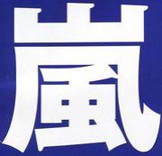 嵐☆海外ツアー凱旋記念公演2007