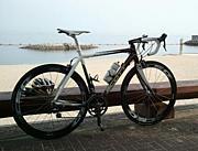 『team plus』 自転車部